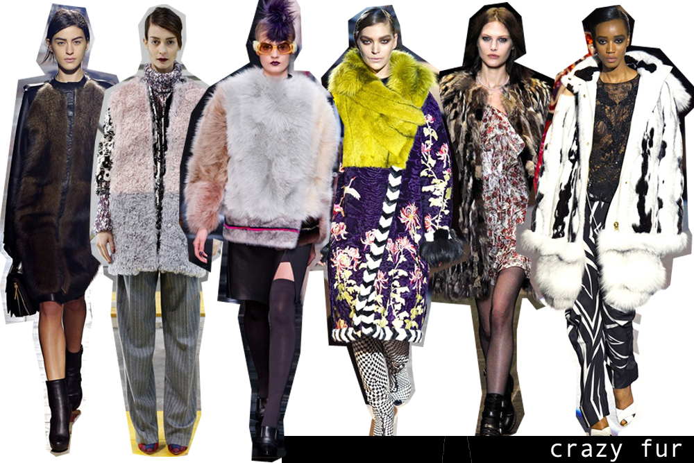 50_crazy fur_copertina
