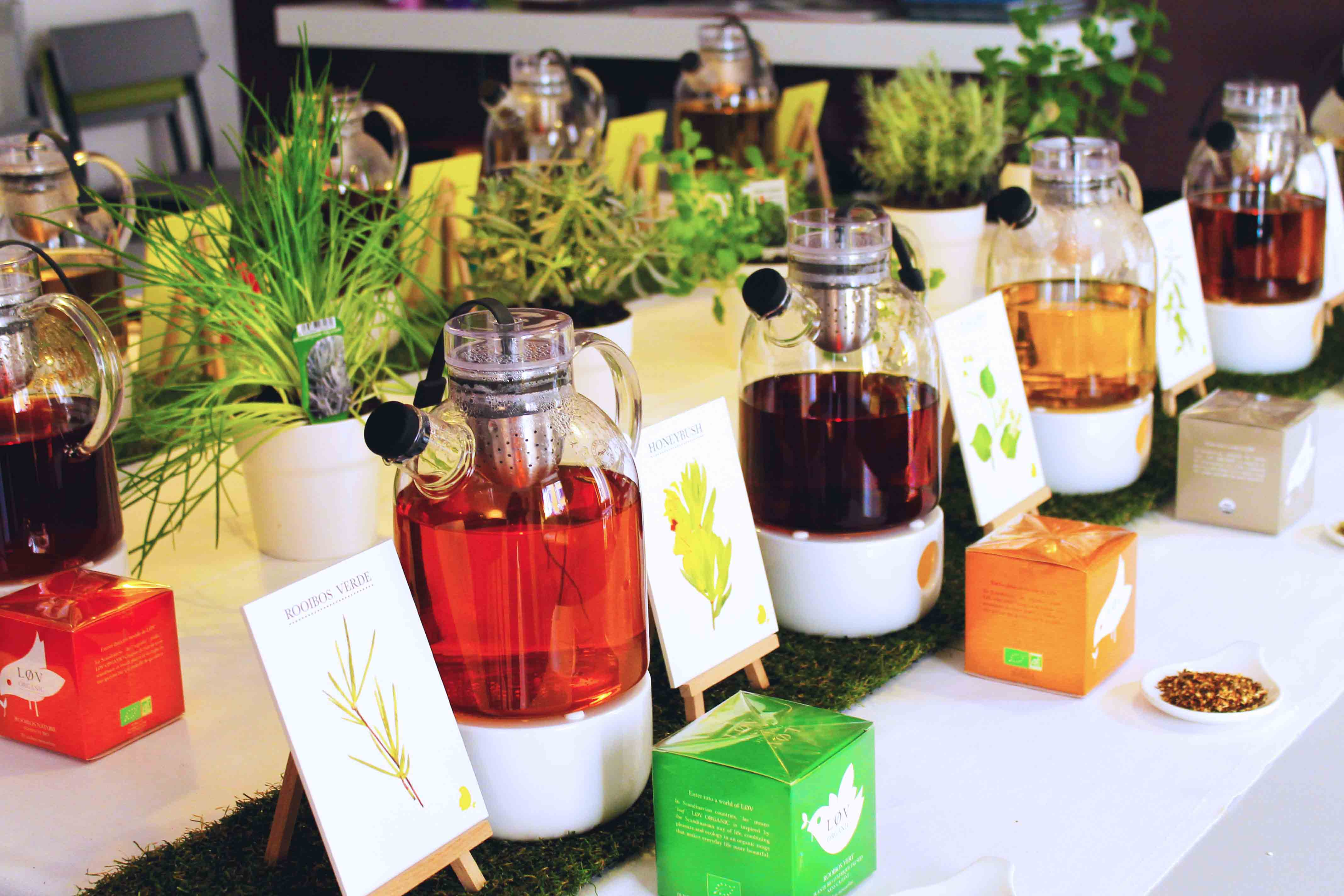Atelier d'Infusione (2) - Copy