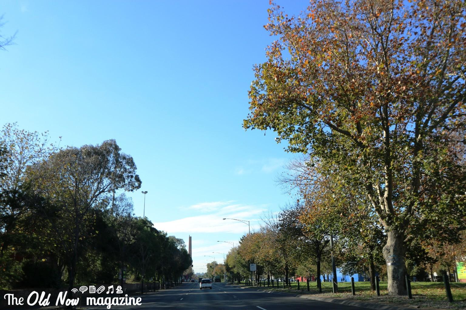 Healesville Victoria THEOLDNOW (3)