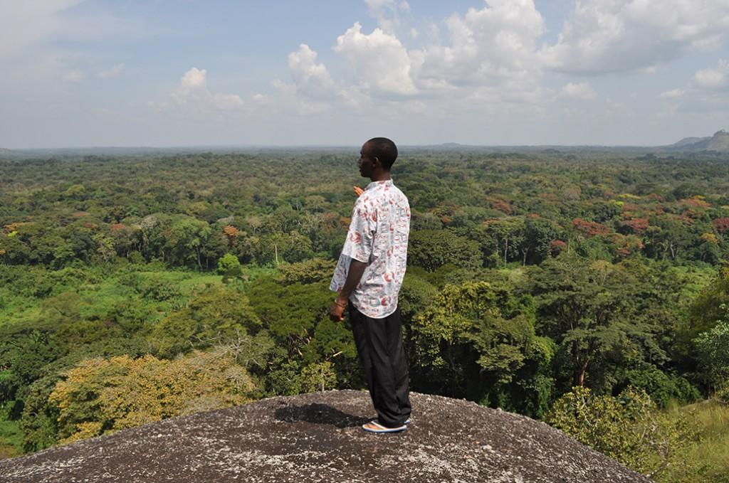 La foresta di MilanoVino per il Camerun