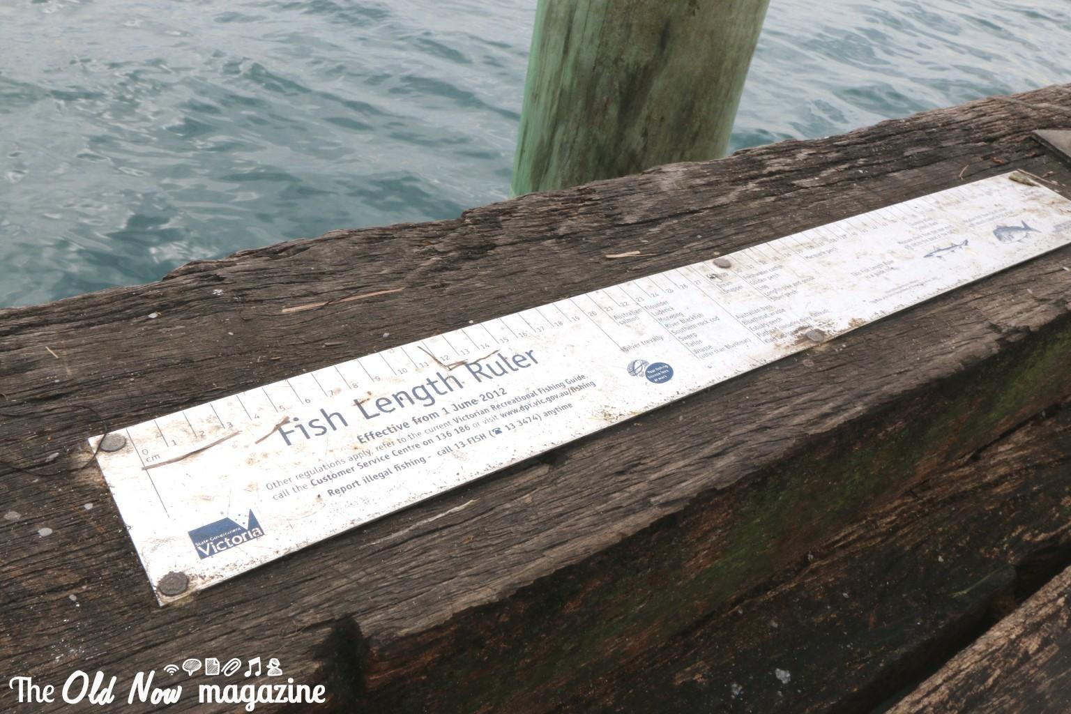 Phillip Island THEOLDNOW (38)