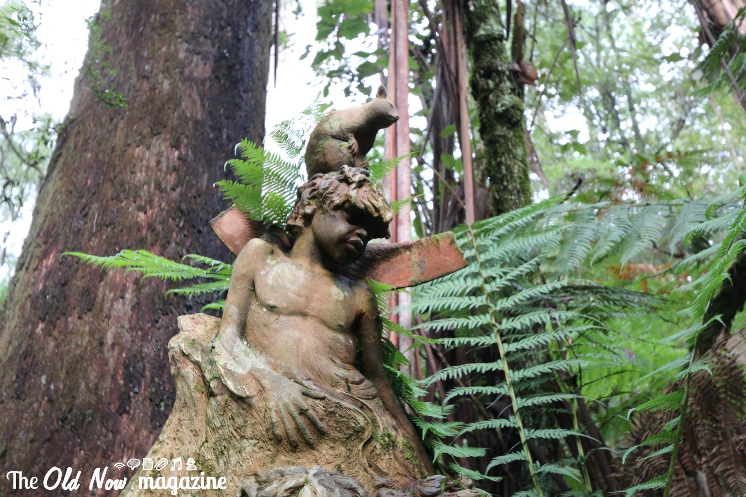 William Ricketts Sanctuary THEOLDNOW (14)