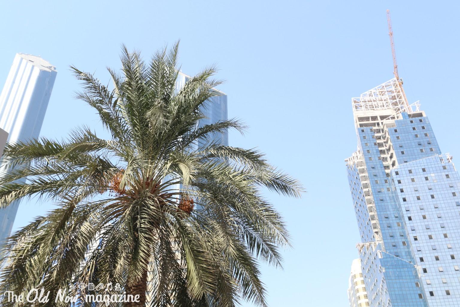 Abu Dhabi THEOLDNOW (1)
