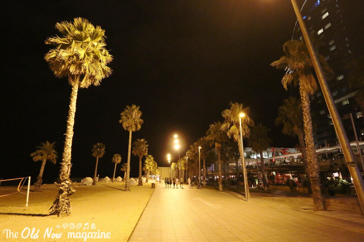 Barcellona THEOLDNOW (295)