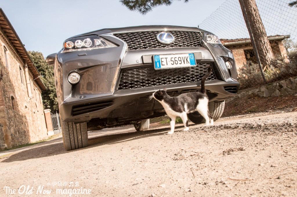 Lexus RX450h (15)