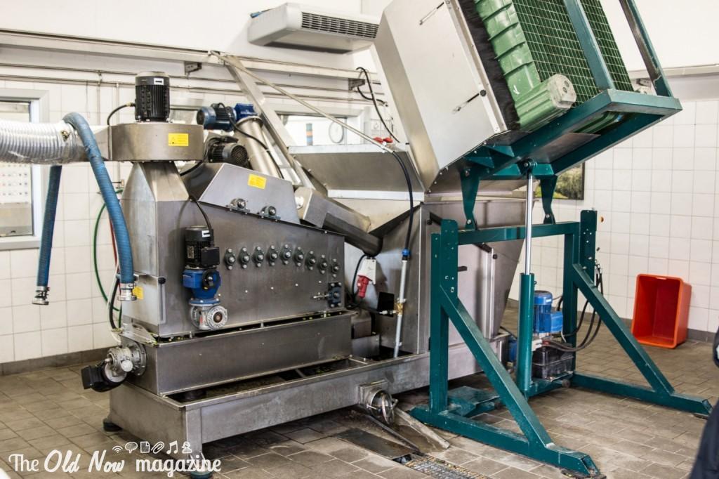 Consorzio Olio Garda DOP 10-2267