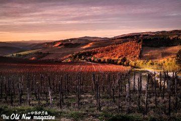 Le colline del Chianti fotografate con la X100T - foto: Simone Raso
