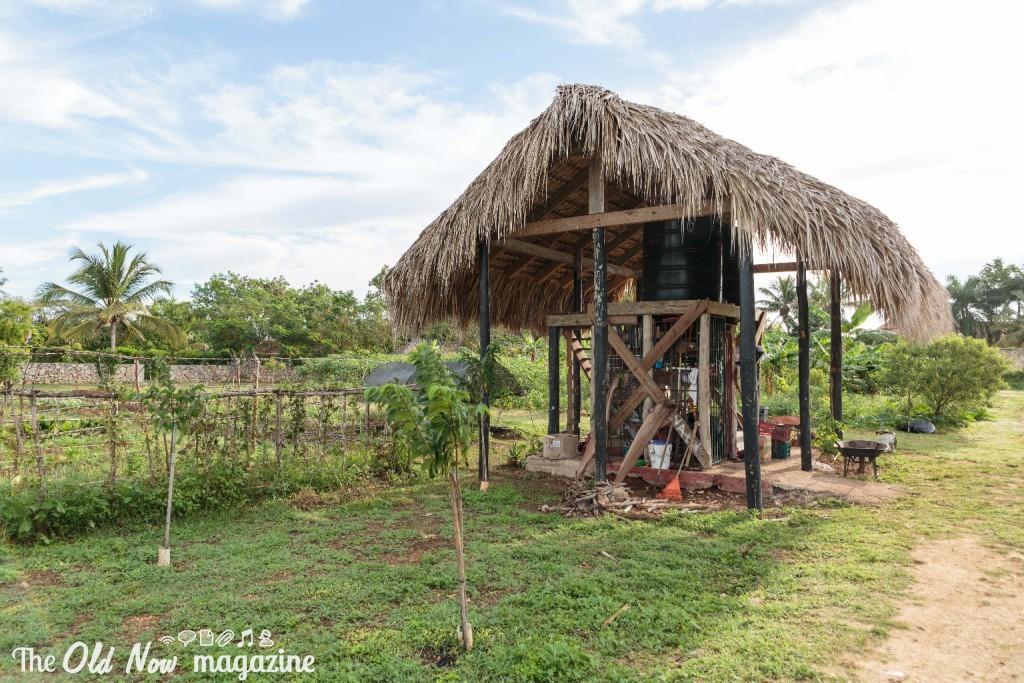Repubblica Dominicana - 0017