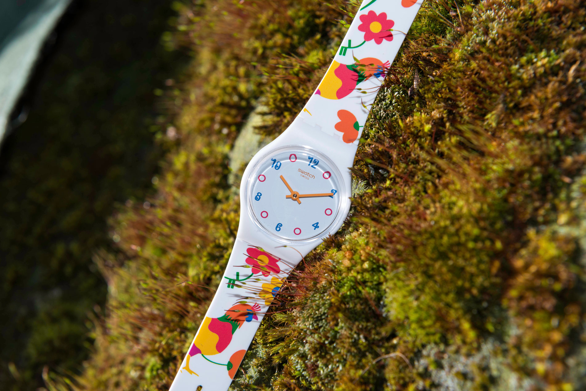 swatch_countryside7